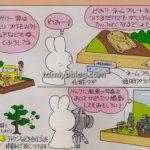 FujitaBook_6