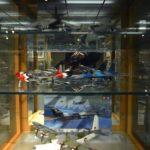 tamiya-museum-visit-in-shizuoka-035