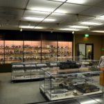 tamiya-museum-visit-in-shizuoka-046
