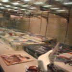 tamiya-museum-visit-in-shizuoka-050